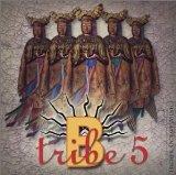 B-TRIBE-5