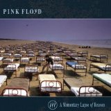 A MOMENTARY LAPSE OF REASON/ REM